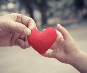 Ein Herz zwischen Eltern und Kind als Zeichen für die Wichtigkeit der Beziehung bei der Erziehung.
